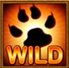 Wild symbol ze hry casino automatu Cats Royal