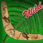 Wild symbol z automatu Kangaroo Island