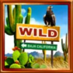Wild symbol ze hry Route of Mexico online