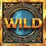 Symbol wild ze hry casino automatu Double Dragons