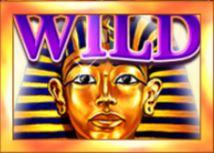 Wild symbol z online automatu Sphinx Wild