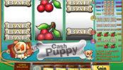 Automatová hra Cash Puppy bez registrace