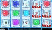 Online automatová casino hra bez stahování Ice Dice
