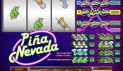Obrázek ze hry online automatu Pina Nevada