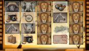 Hrací kasino automat Safari