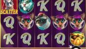 Obrázek herního automatu online The Catfather