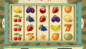 Online automatová casino hra bez stahování Vintage Win