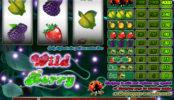 Automat zdarma bez registrace Wild Berry 3 reel