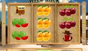 Online automatová casino hra bez stahování Wild Jack
