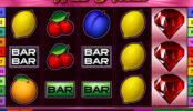 Obrázek ze hry online automatu Wild Rubies