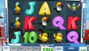 Happy Birds casino automatová hra online