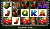 Herní automat zdarma The Jungle II