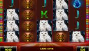Automat bez registrace Magic Owl online