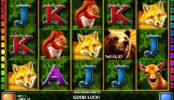 Herní kasino automat Bavarian Forest