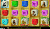 Online herní automat bez vkladu Dragon Spirit