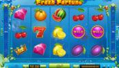 Online automatová casino hra bez stahování Fresh Fortune