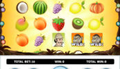 Automat Jungle Fruits online bez vkladu
