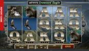 Untamed: Crowned Eagle herní automat online